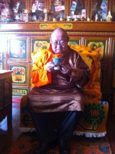 Lama Dawa Rinpoche (full name: Dawa Rinpoche Khenrap Wangchuk Samten Tenpai Gyaltsen Pel Sangpo) was detained and sentenced to 7 years in prison.