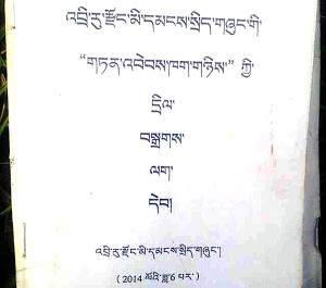 Title page of the temporary regulation passed by Diru County government