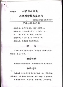 Image 3 of the internal document prepared by the criminal and medical department of the Lhasa Public Security Bureau