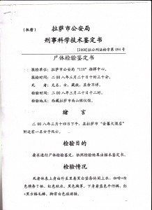 Image 6 of the internal document prepared by the criminal and medical department of the Lhasa Public Security Bureau